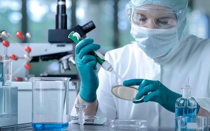 Fundusze unijne a biologia molekuralna